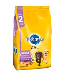 Pedigree_Junior