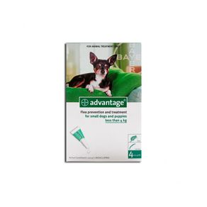 advantage-perros-04-ml-1000x798