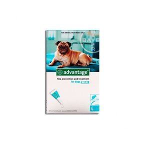 advantage-perros-1-ml-1000x798