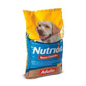nutrion_adulto