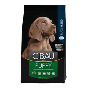 Cibau-Puppy-Maxi-Breed