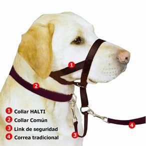 Halti-Headcollar-T2-Cafe