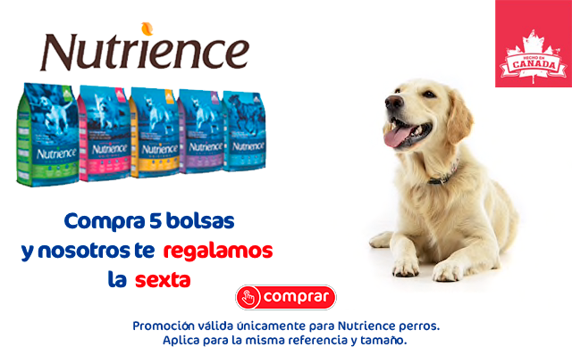 banner nutrience 6x5