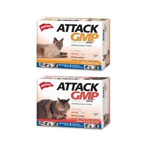 Holliday-Attack-Gatos-PE0160