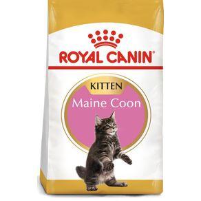 Royal-Canin-Maine-Coon-Kitten-10-Kg