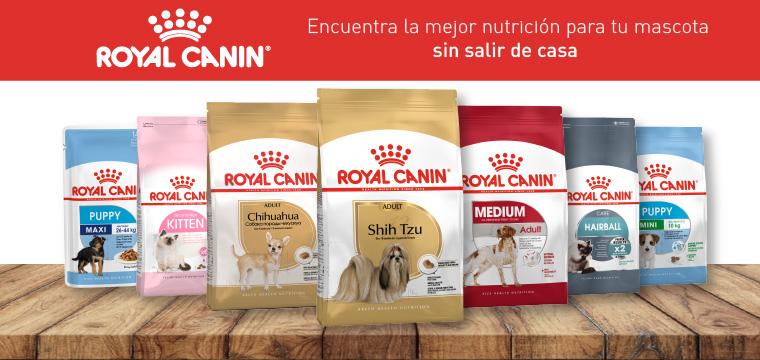 Royal Canin todos los productos